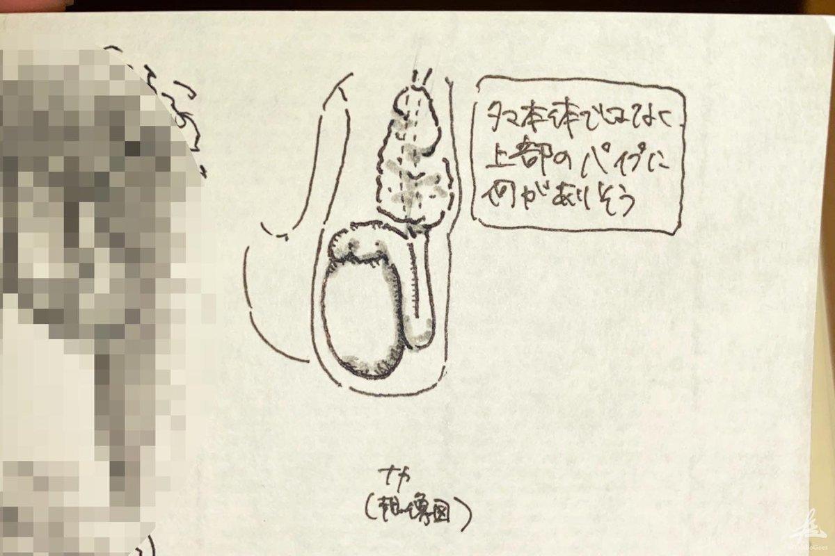 f:id:taisho_goes:20210815191220j:plain