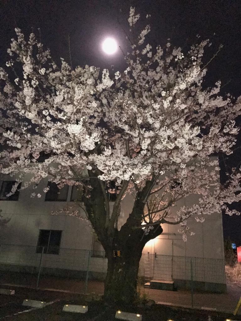 f:id:taishochikusen:20170411211433j:plain
