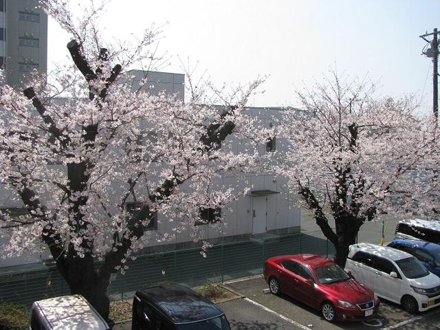 f:id:taishochikusen:20180328124504j:plain