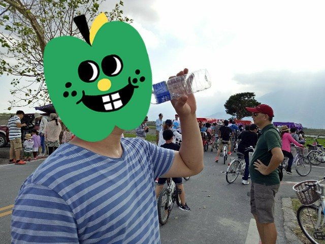 f:id:taiwaninaka:20190514150556j:image