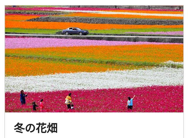f:id:taiwaninaka:20190514164051j:image