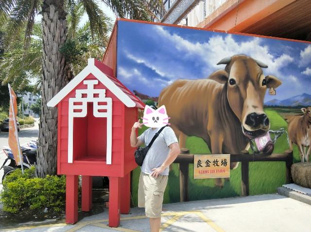 f:id:taiwaninaka:20190614214353j:image