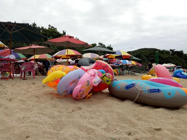 f:id:taiwaninaka:20190626091147j:image