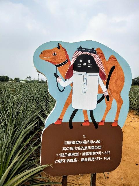 f:id:taiwaninaka:20191104192550j:image