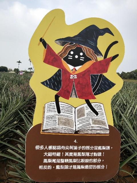 f:id:taiwaninaka:20191104192722j:image