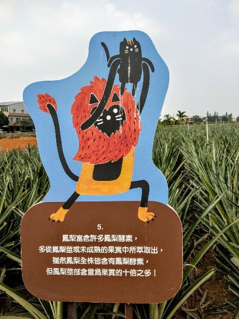f:id:taiwaninaka:20191104192801j:image