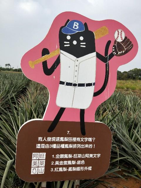 f:id:taiwaninaka:20191104192900j:image