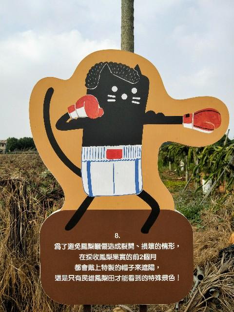 f:id:taiwaninaka:20191104192929j:image