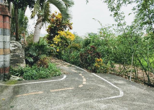 f:id:taiwaninaka:20200409094358j:image