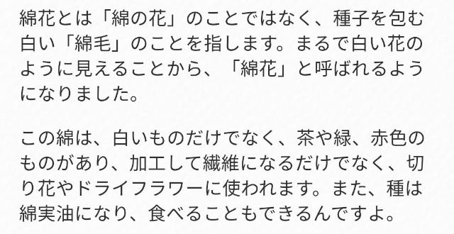 f:id:taiwaninaka:20200617082642j:image