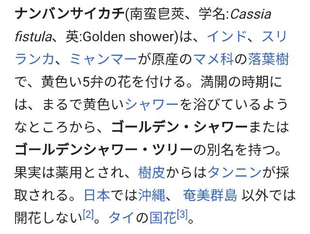 f:id:taiwaninaka:20200617082803j:image