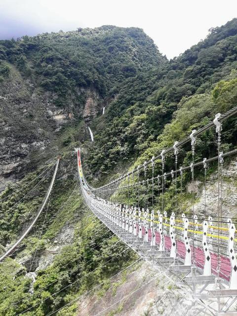 f:id:taiwaninaka:20200625225919j:image