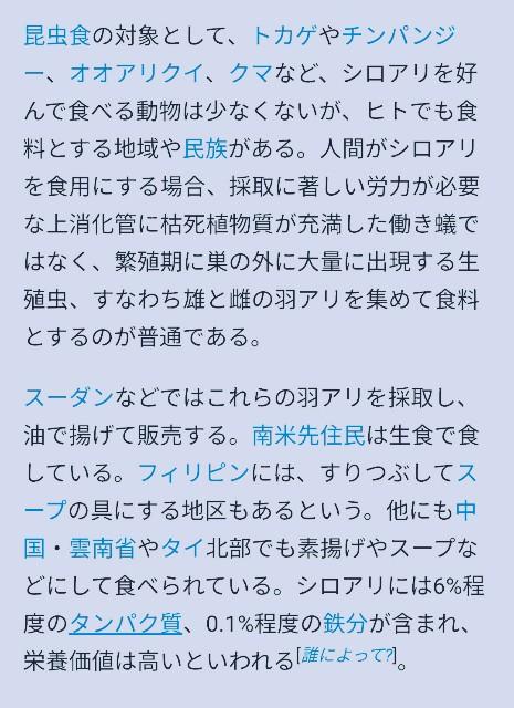 f:id:taiwaninaka:20210531014019j:image
