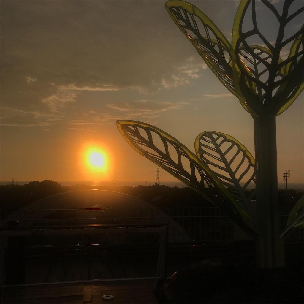 f:id:taiwaninaka:20210720121937j:image