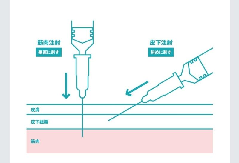 f:id:taiwaninaka:20210911114837j:plain