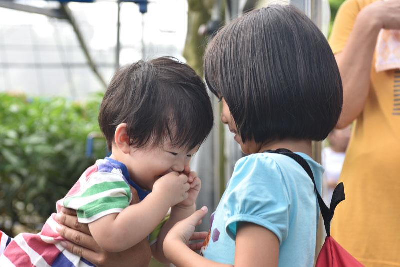 f:id:taiwanokinawa:20161023220555j:plain
