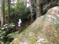 2018/10/12 復興山国立公園 台湾 桃園
