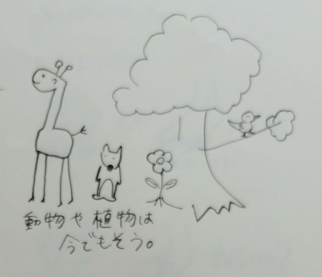 f:id:taiwasemikatu:20181018090201j:image