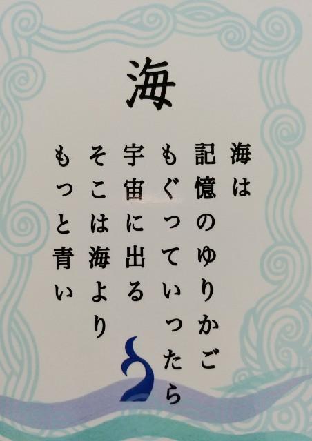 f:id:taiwasemikatu:20190121194535j:image