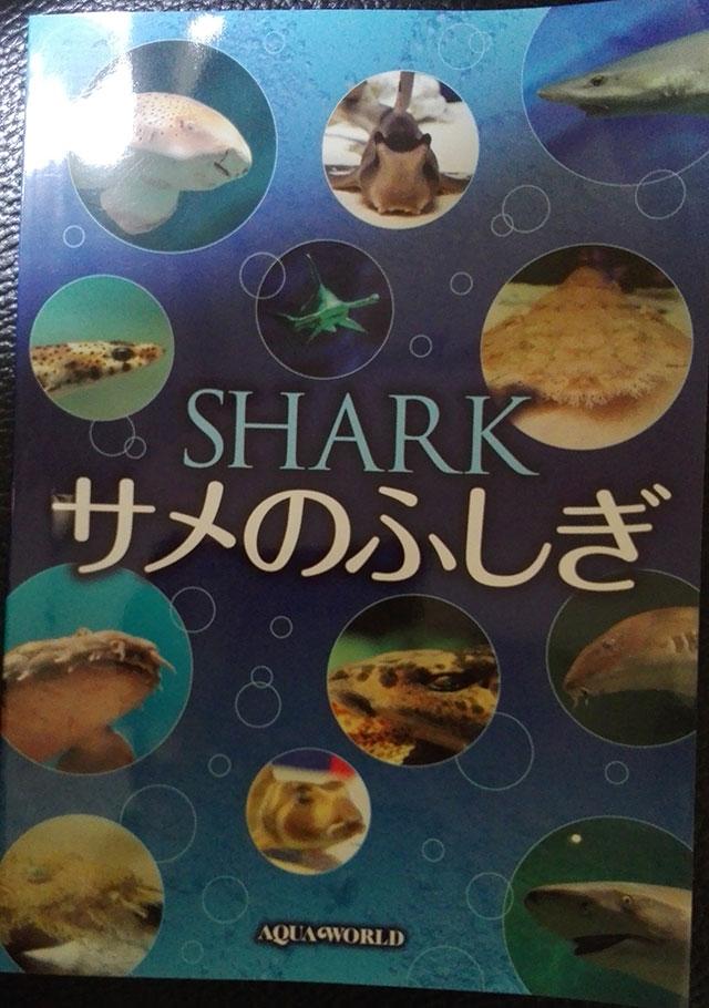 f:id:taiyanmama:20170627160509j:plain
