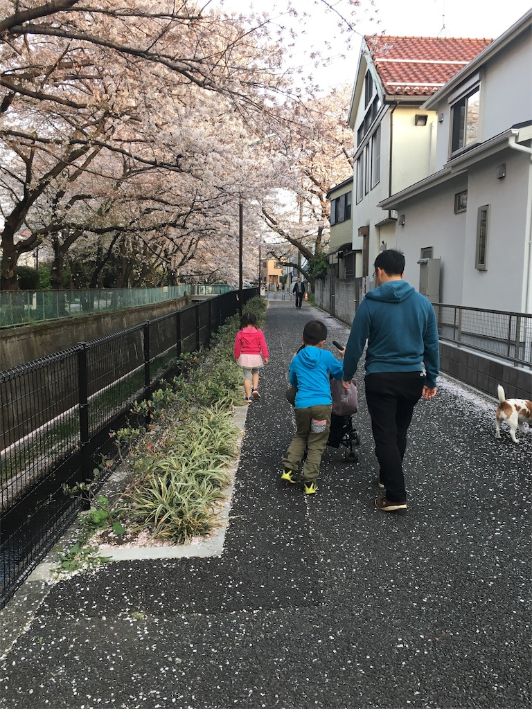 f:id:taiyo-no-megumi:20180331214626j:image