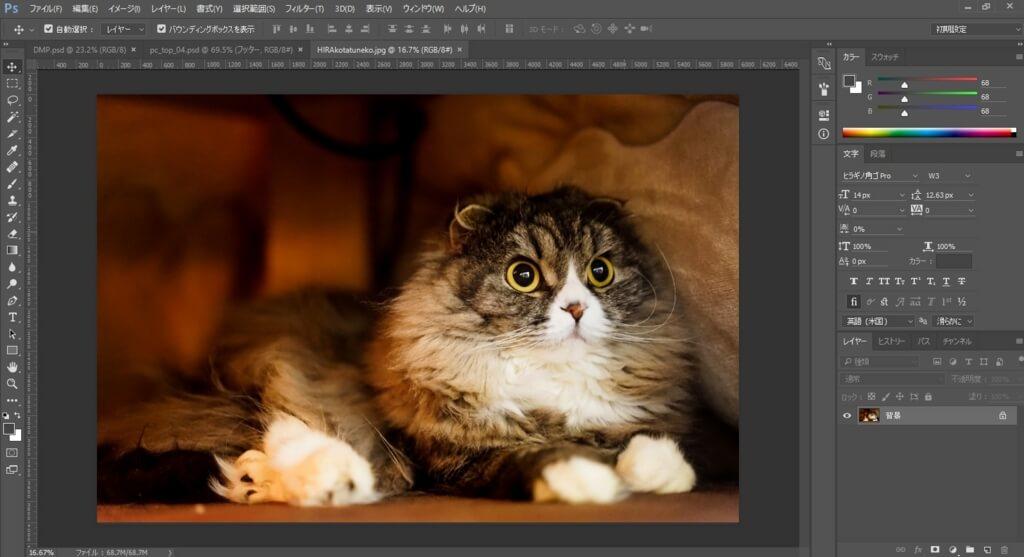 Photoshopでモザイクをかけたい画像を開く