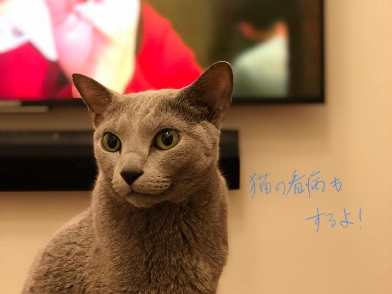 f:id:tak_jp:20180613100042j:plain