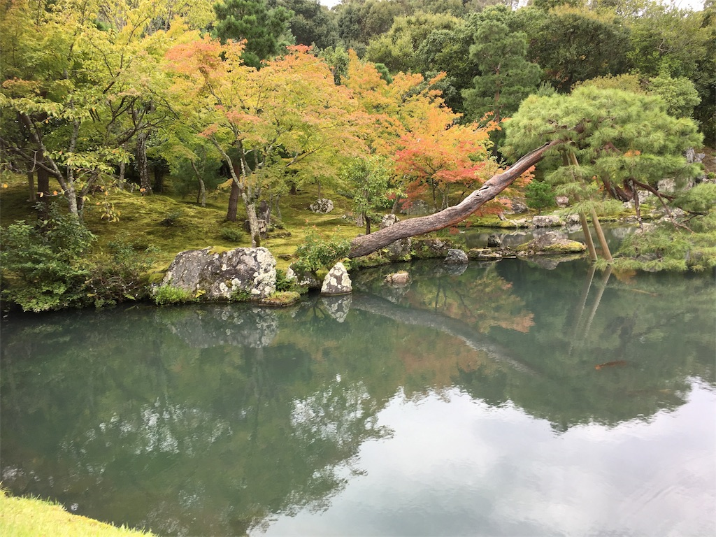 f:id:taka-s2-appekusu112:20181005130540j:image