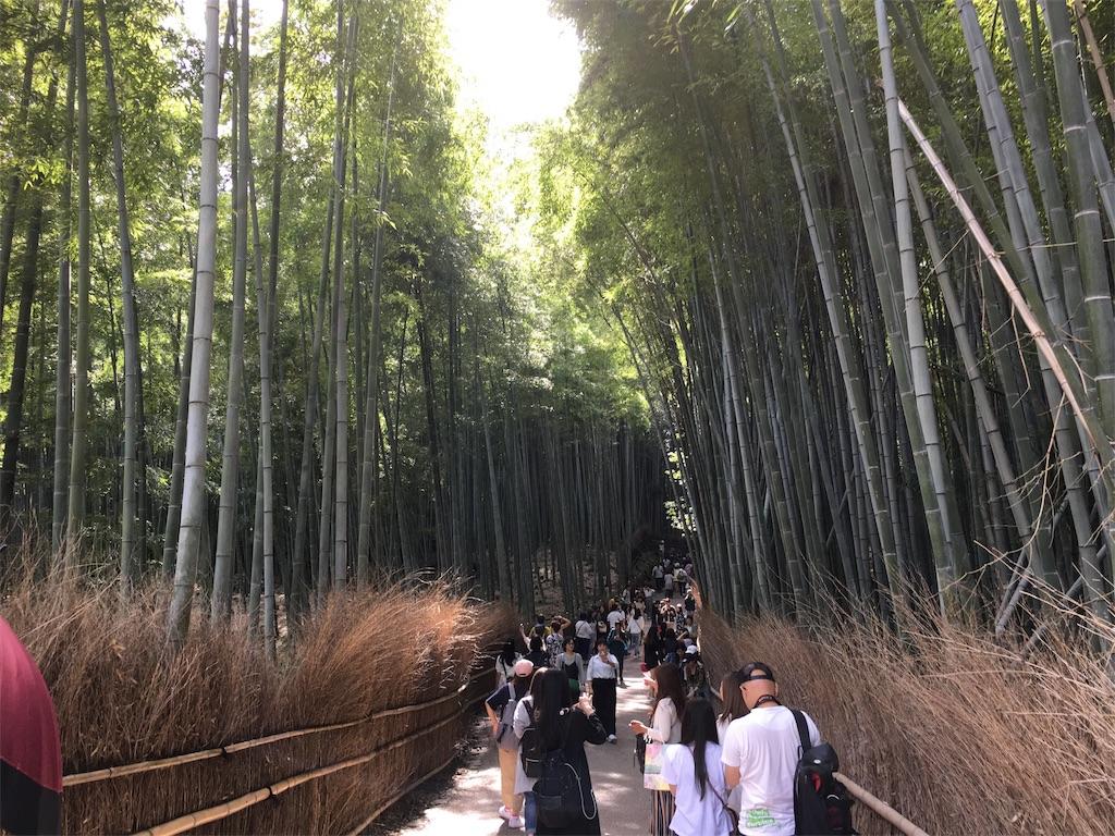 f:id:taka-s2-appekusu112:20181005130717j:image