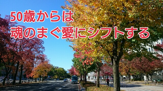 f:id:taka664:20161116215700j:image