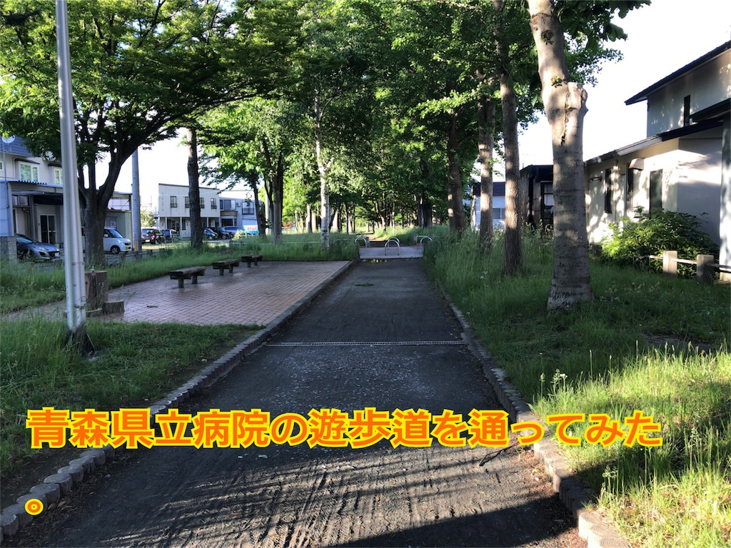 f:id:taka76:20170610232055j:image