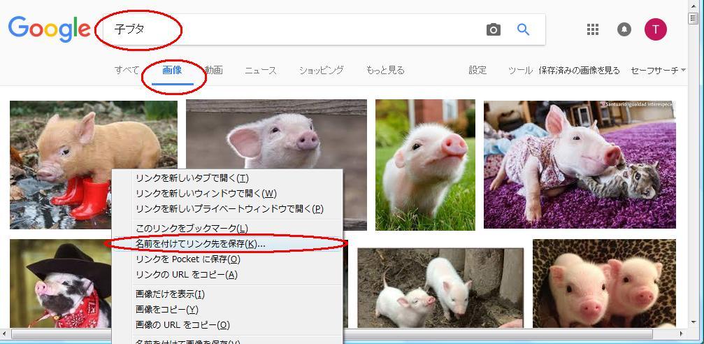 f:id:takaaki-niikawa:20170108203246j:plain