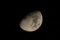 [月]九夜月 月齢 9.12 輝面比 74.22%