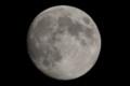 [月]十三夜 月齢 13.04 輝面比 97.73%