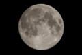 [月]小望月(幾望) 月齢 14.13 輝面比 99.78%