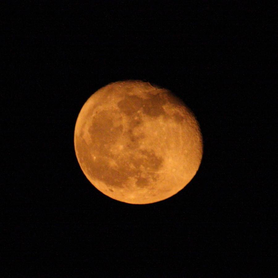 立待月 橙ver. 月齢 17.62 輝面比 79.50%