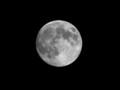 中秋の名月らしいので 月齢13.91 輝面比99.51% ぐらいかな
