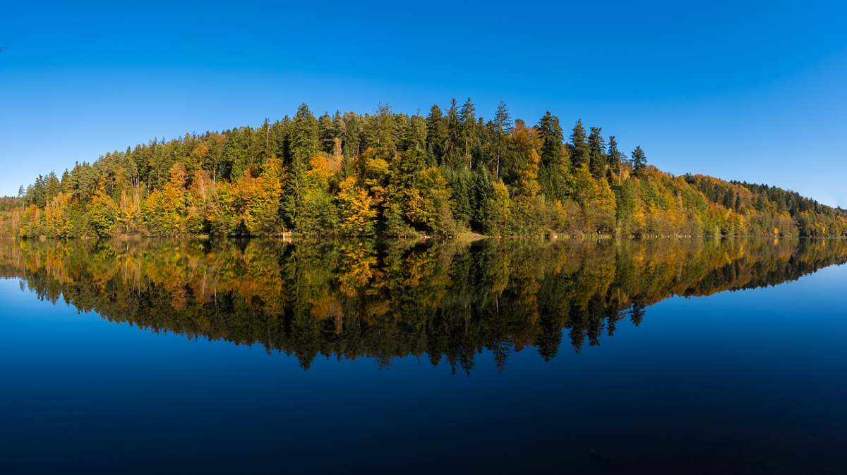 湖 フォレスト パノラマ
