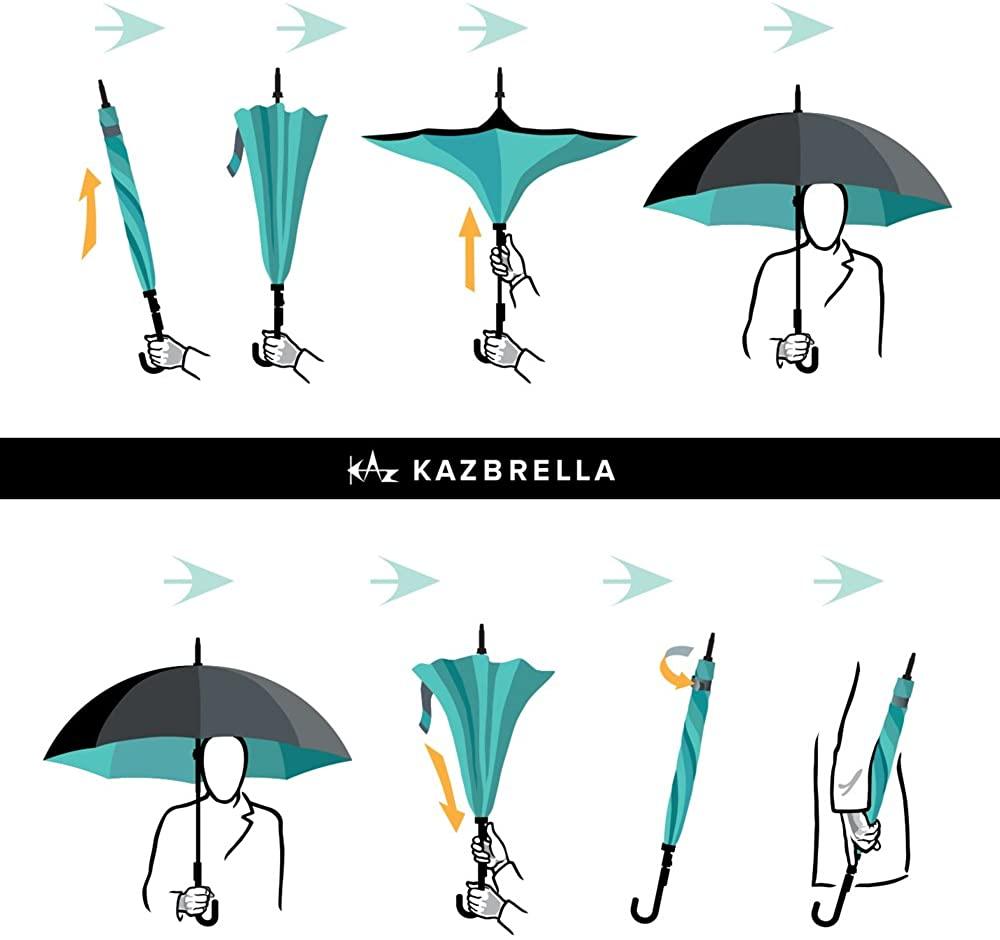 カズブレラの図
