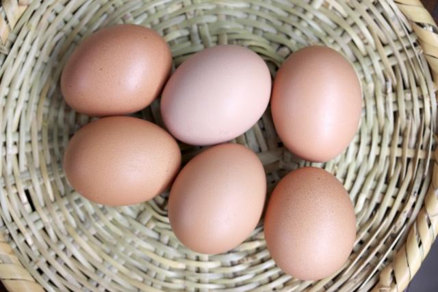 かごの中の生卵