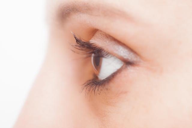 顔のパーツ「目」
