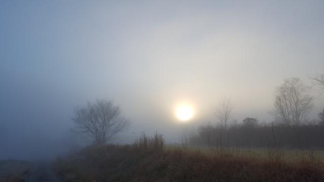 朝霧の太陽