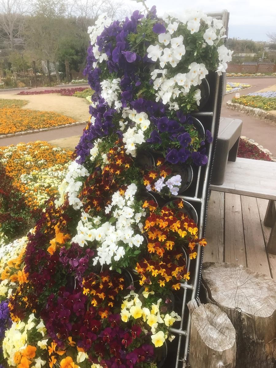 花の文化園の花壇の中央の記念撮影用の場所