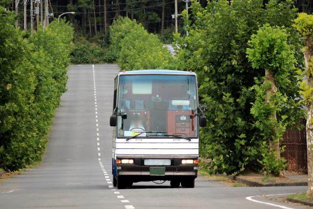 緑の中を走る観光バス