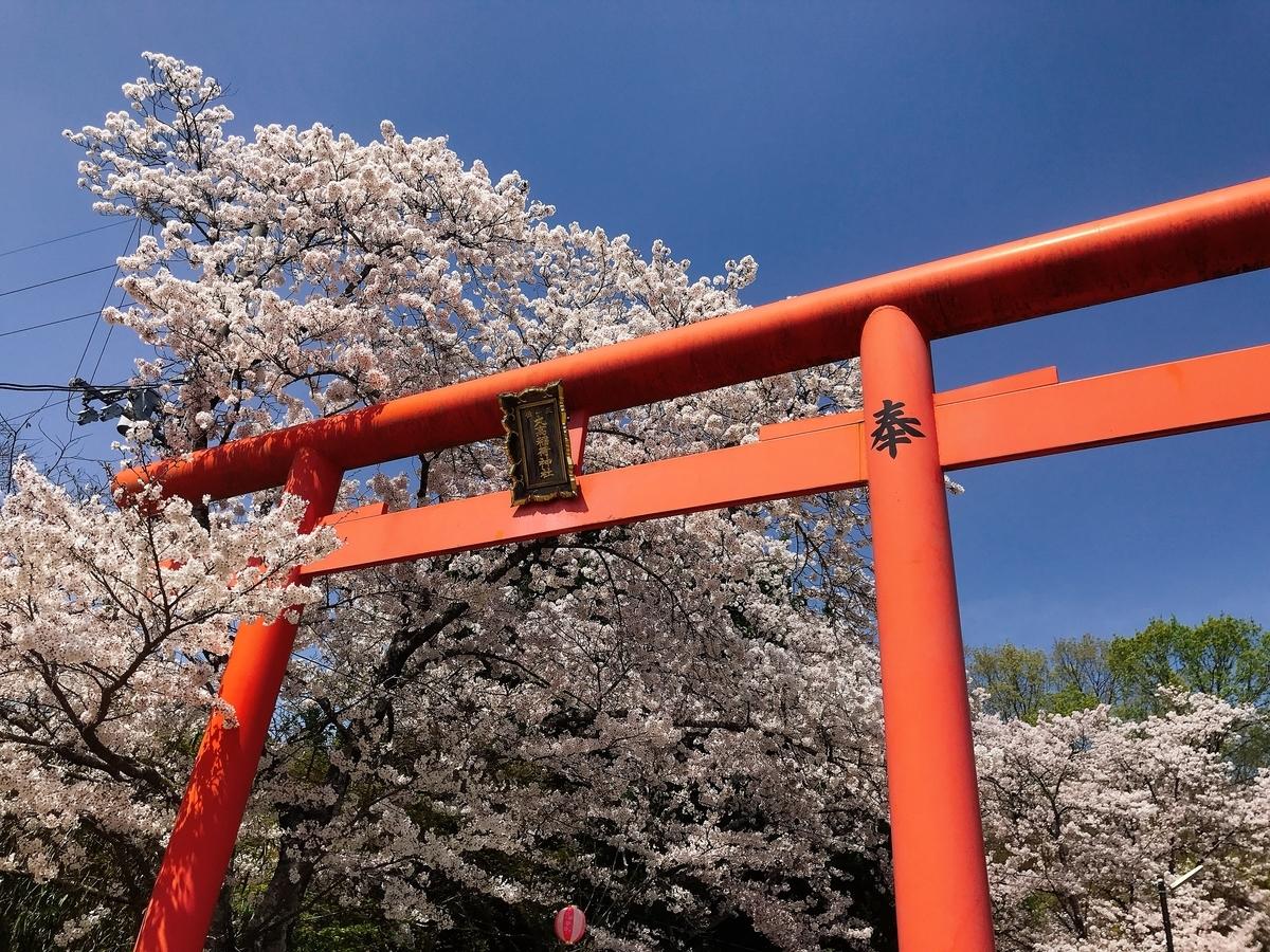 丸高稲荷神社の入口の鳥居