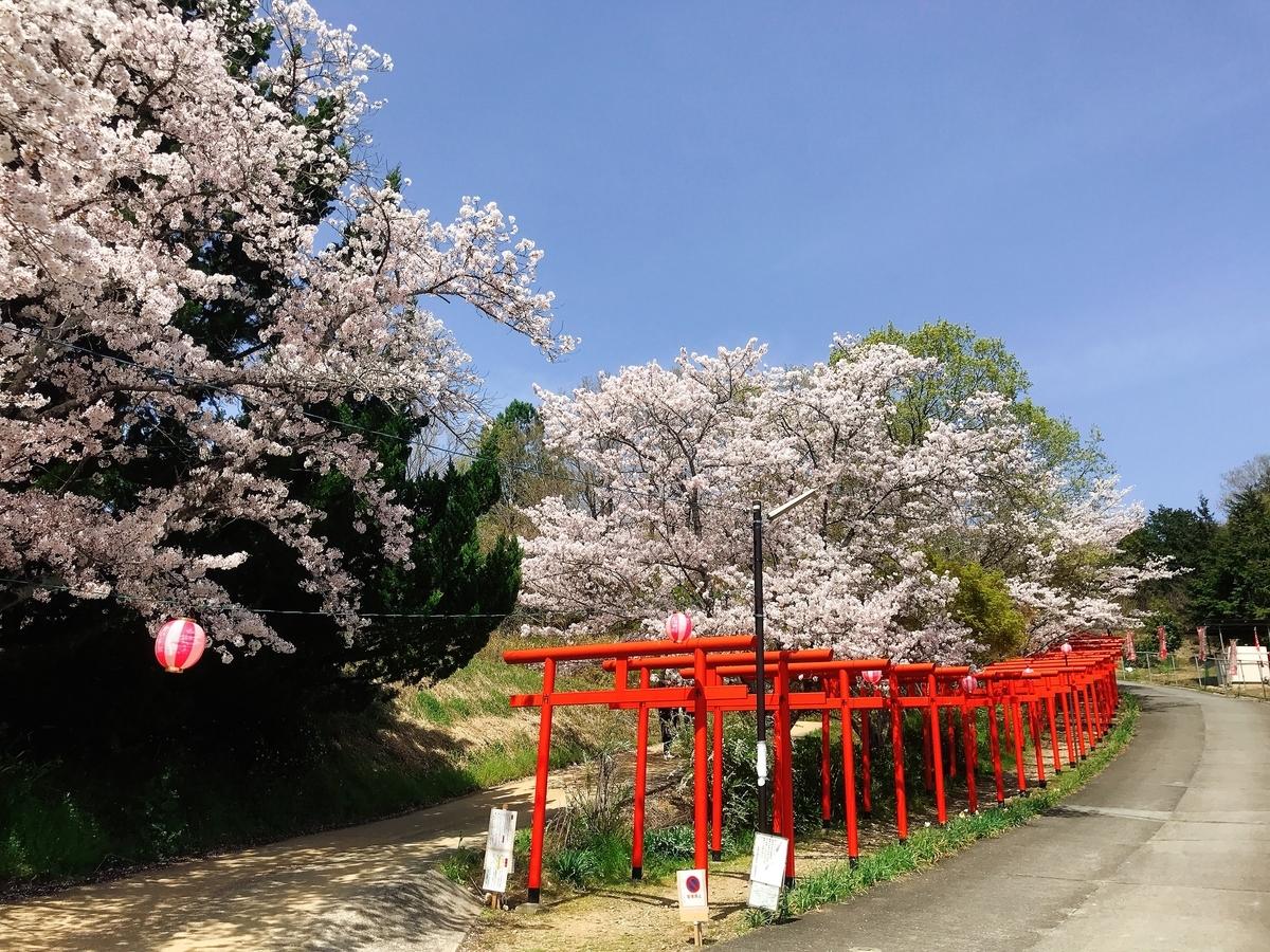 「丸高稲荷神社」にあるたくさんの鳥居