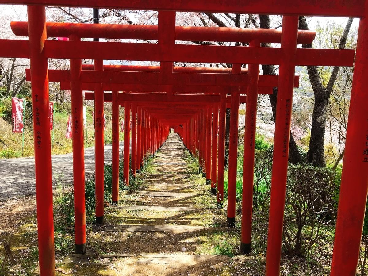 「丸高稲荷神社」にあるたくさんの鳥居の一番上から写してみた!