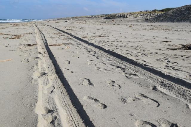砂浜のわだち