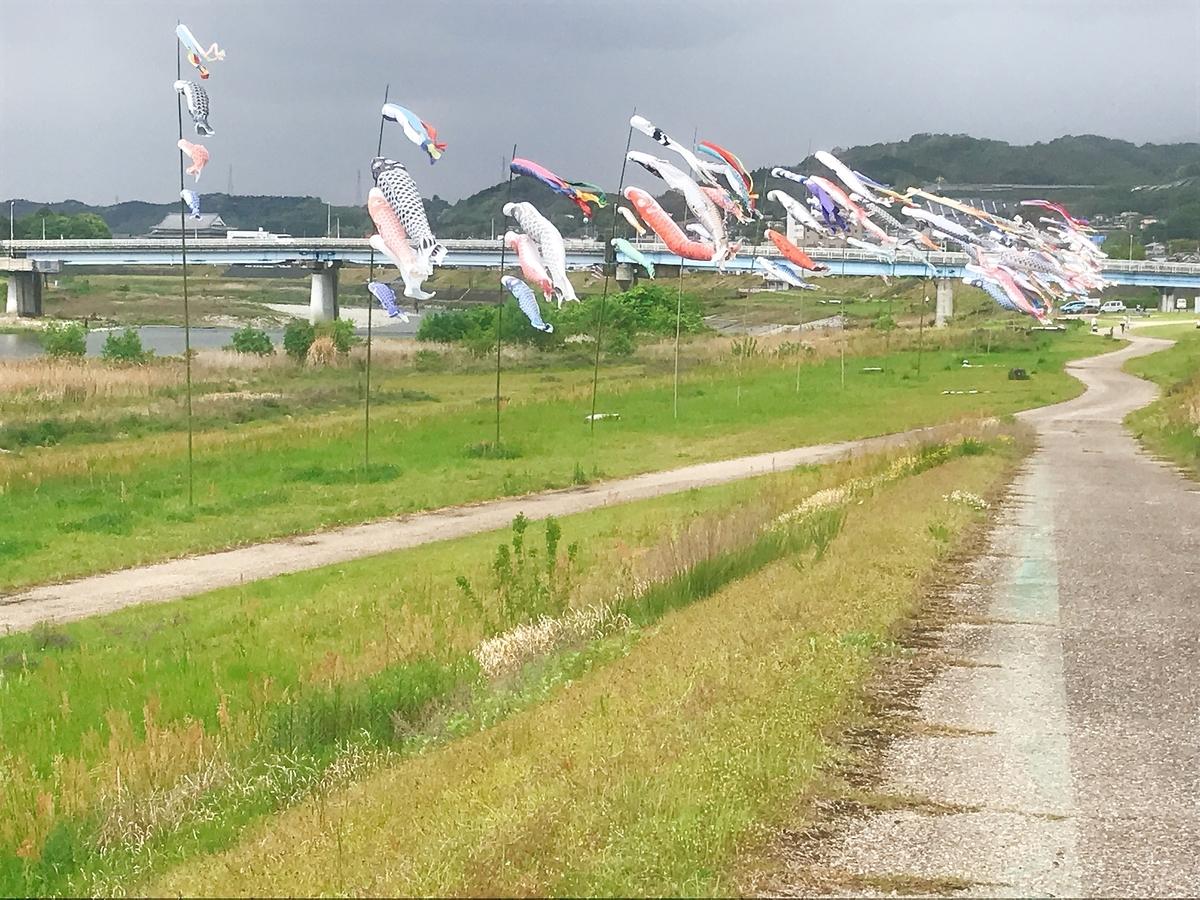 大川橋の鯉のぼり
