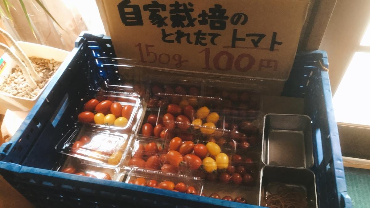 朝摘みトマトの直売